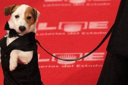 El perro de la Primitiva salta de la televisión a la gran pantalla