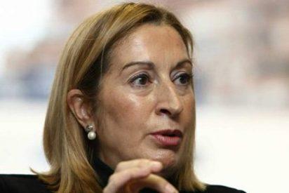 Canarias pide mantener las prestaciones aeroportuarias