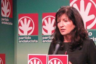 Pilar González (PA) reclama responsabilidad a los agentes sociales en la reforma laboral