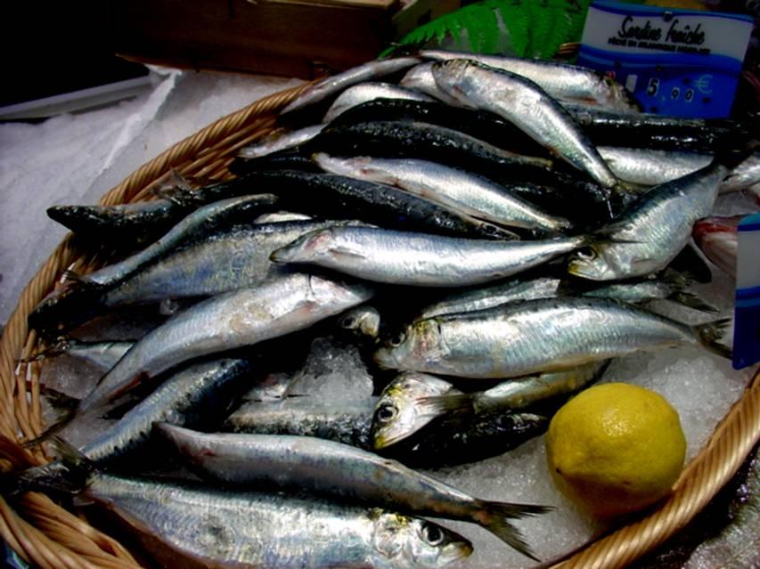 Qué hacer con... ¿una lata de sardinas?