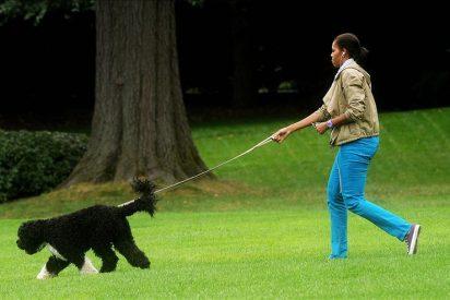 """Michelle Obama y """"Bo"""" ejercen de anfitriones con turistas en la Casa Blanca"""