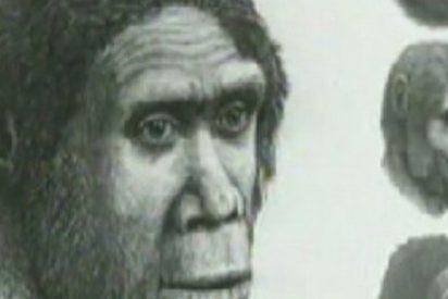 El ADN podría explicar el porqué de la extinción de los neandertales