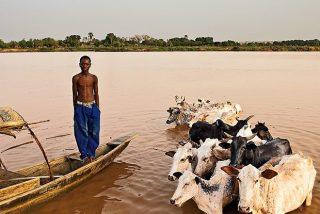 Las Cáritas del Sahel activan planes de emergencia para hacer frente a la hambruna