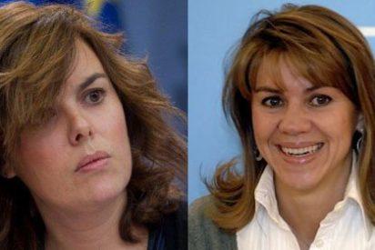 """Carmelo Encinas: """"Rajoy reparte el poder entre dos gatas, Soraya y Cospedal"""""""