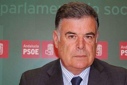 Dimite el secretario del PSOE de Sevilla cabreado con la lista electoral