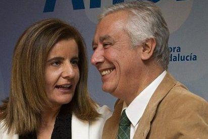 """Báñez asegura que Andalucía necesita """"más que nunca"""" un Gobierno que """"diga la verdad"""""""