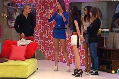 """Impagables reacciones de los concursantes de 'GH12+1' al ver a su nueva compañera brasileña: """"Esta tía es un travesti, tiene más pelo que yo"""""""