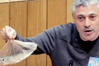 Un diputado nacionalista deposita un jurel muerto en el escaño de Feijóo