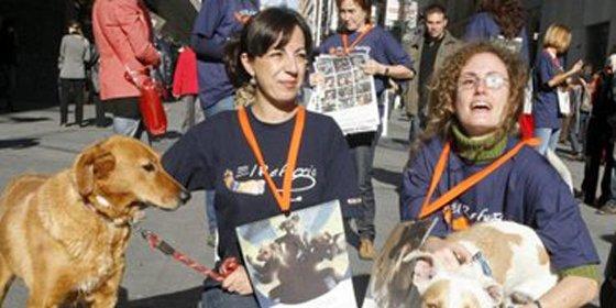 El Refugio lanza una campaña para no tirar animales vivos a la basura
