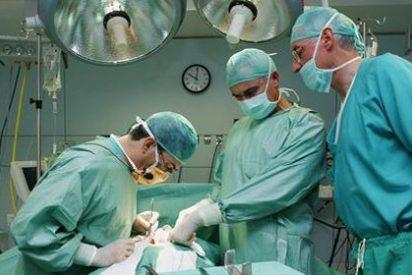 El rechazo en los trasplantes de riñón, más cerca de solventarse