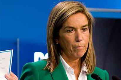 """Ana Mato: """"La Sanidad seguirá siendo gratuita y de calidad pero harán falta reformas"""""""