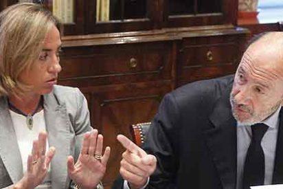 Rubalcaba y Chacón se dejan ver confabulando en el Congreso