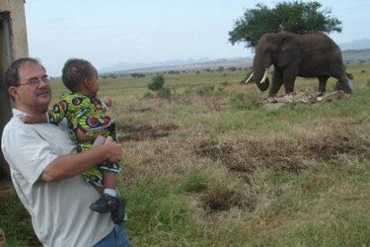 Papá, dile al rey que no mate elefantes