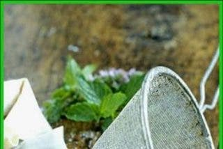 Smoothie primaveral de kefir, menta, kiwi, pepino y miel