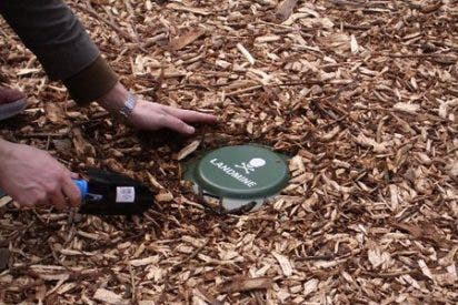 El Papa pide acabar con las minas antipersonas