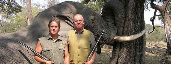 El Rey, operado de la cadera tras caerse cazando elefantes en Africa