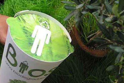 Cuando mueras, te pueden incinerar, enterrar o convertirte en árbol