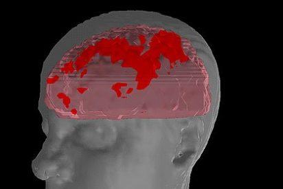 Detectan actividad del cerebro embrionario antes del nacimiento