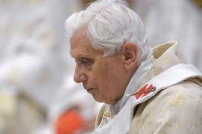 El Papa lamenta la matanza en Siria