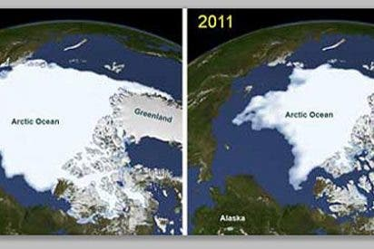 La NASA descubre un bosque de plantas marinas bajo el hielo del Ártico
