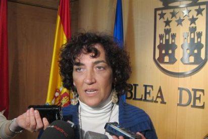 IU critica que la Comunidad de Madrid siga dando 1,7 millones al patrimonio eclesiástico