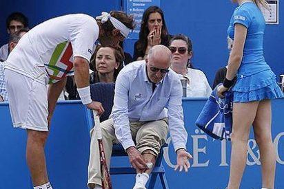 David Nalbandian, descalificado por herir a un árbitro