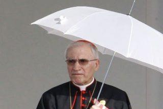 """Europa Laica: """"La Iglesia quiere tapar sus miserias con su obra"""""""