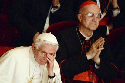 El Papa reitera su confianza en Bertone