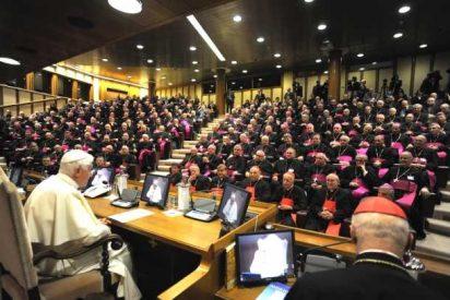Obispos, ¿acolitos del Papa?