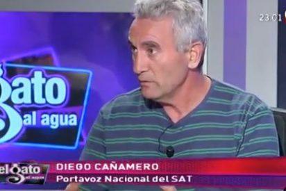 El SAT recibió 200.000 euros en ayudas de la Junta de Griñán