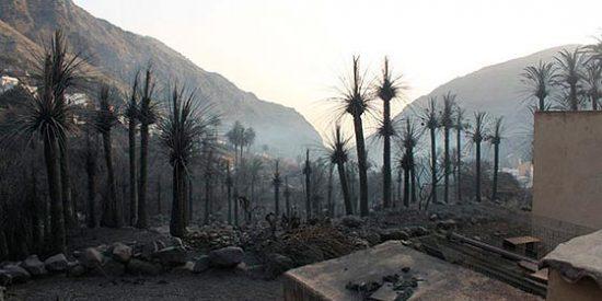 La Guardia Civil contradice al Gobierno: no hay detenidos por el incendio de La Gomera