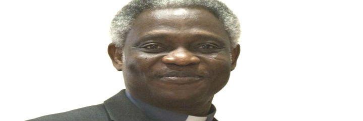 """Cardenal Turkson: """"Las matanzas no detendrán el testimonio del amor de Dios"""""""