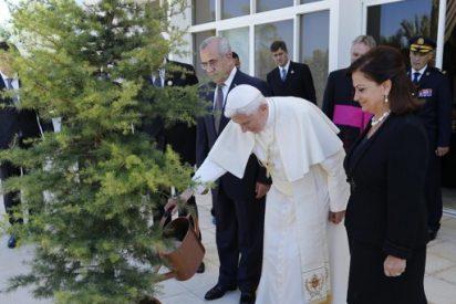 Los patriarcas de Siria muestran su esperanza ante el futuro de paz en la región