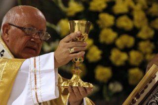 """La Iglesia chilena admite que """"hemos perdido credibilidad por nuestras debilidades"""""""