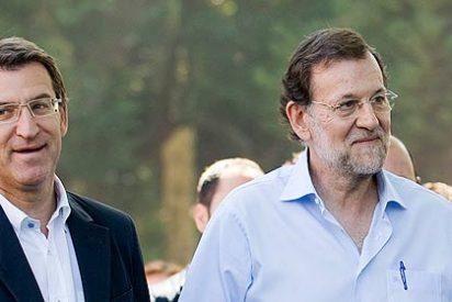 Gobierno y PP asumen que Rajoy se la juega en la mayoría absoluta de Feijóo