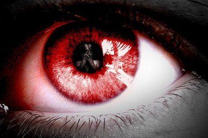 Científicos han descubierto que el miedo puede borrarse de nuestra mente