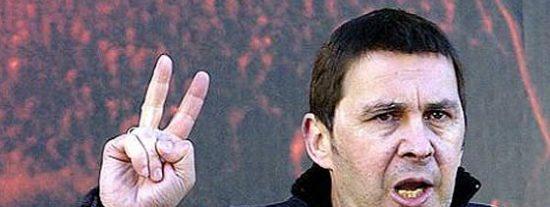 """El terrorista Otegi pide """"disculpas"""" por las palabras pero no por los crímenes de ETA"""