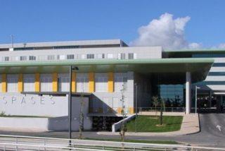 El director de Son Espases dirigirá ahora el Ib-Salut por decisión de Martí Sansaloni