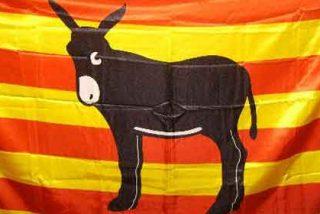 El nacionalismo no se basa en el amor a Cataluña, sino en el odio al resto de España