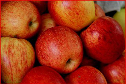Tarta confitada de manzanas reinetas