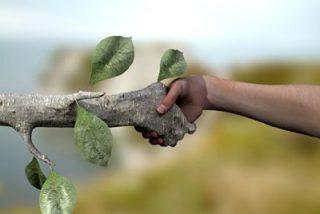 ¿Las personas merecen más protección que los árboles?