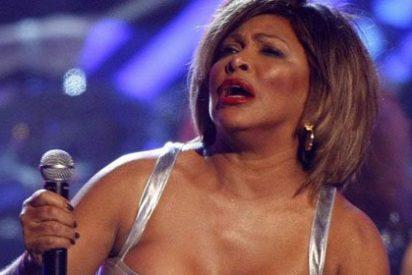Música de Tina Turner para espantar a los pájaros en el aeropuerto de Staverton