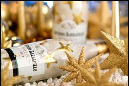 Castillo de San Diego, el vino blanco más vendido de España, presenta su cosecha 2012 de cara a la Navidad