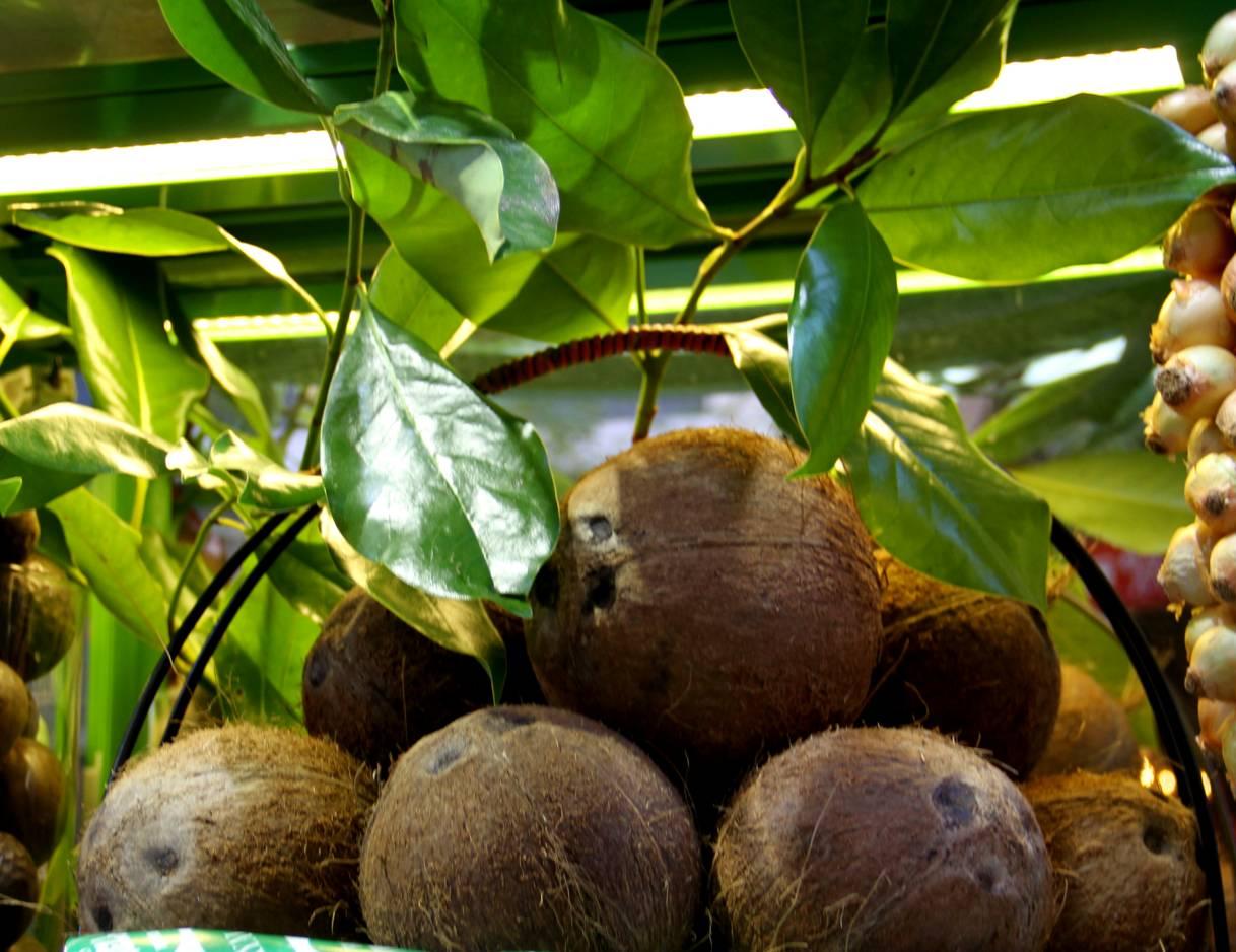 Suflé exótico de coco y limón