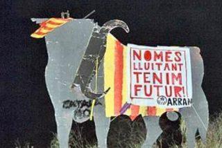 Círculo Balear denunciará ante la Guardia Civil a Arran por el corte de cuernos al toro
