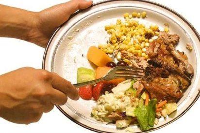 Tiramos a la basura una media de 163 kilos de comida cada año como si tal cosa