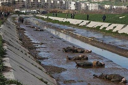 Aparecen en un canal de Alepo más 100 cadáveres con tiros en la cabeza