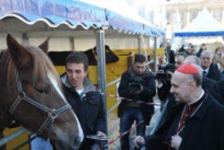 Asnos y vacas, bendecidos en el Vaticano