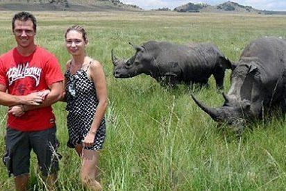 Si vas de safari fotográfico, no te acerques mucho al rinoceronte
