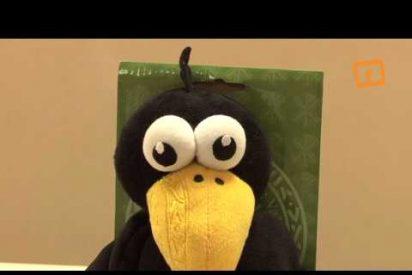 """La UCV crea su mascota, """"Sento"""", inspirada en el cuervo que protegió el cuerpo de San Vicente Mártir"""
